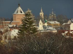 Мини-гостиница На Суздальской - фото 14