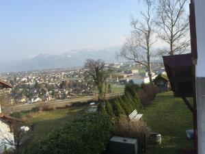 Rheintalblick
