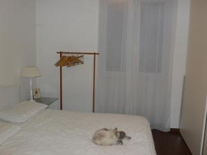 B&B Villa Magia, Bed and Breakfasts  Credaro - big - 7