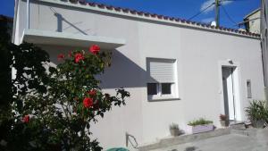 Perla Apartment