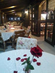 Geyikli Herrara, Отели типа «постель и завтрак»  Geyikli - big - 33