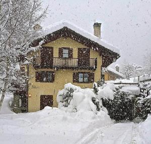 Bellevue Mont Blanc - Apartment - Courmayeur