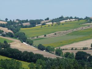 Colline Di Bartolo, Holiday homes  Corinaldo - big - 1
