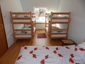Danubio Hostel