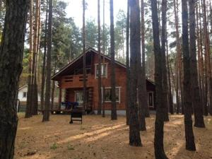 Wooden cottage in Lesnaya Skazka