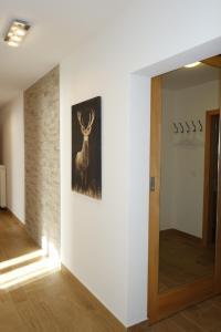Chesa Muragls, Appartamenti  Pontresina - big - 14