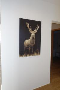 Chesa Muragls, Appartamenti  Pontresina - big - 16