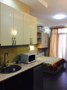 Studio Apartment Pekini 20, Apartmány  Tbilisi City - big - 9