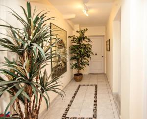 Arxontiko, Guest houses  Tinos Town - big - 45