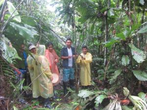 Amazon Golden Snake, Kunyhók  Santa Teresa - big - 17