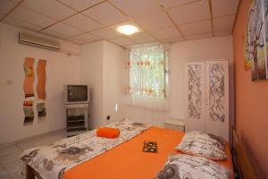 Apartment Hajduk