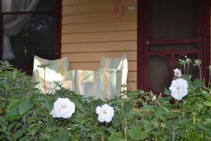 Lemonade Creek Cottages, Chaty v prírode  Lorne - big - 46