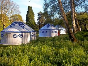 5 Star Bungalow Plush Tents Glamping Hotel Chichester Great Britain