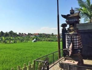 Bali Green Hostel, Хостелы  Семиньяк - big - 8