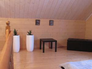 Гостевой дом Суздальский Дворик - фото 23