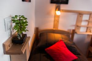 Guest House Centar - фото 17