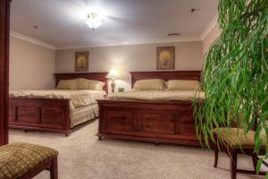 Mountain Vista Inn & Suites, Hotels  Pigeon Forge - big - 22