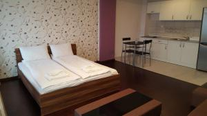 Grand'Or Studio Apartments, Apartmány  Oradea - big - 11