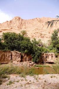 Kasbah Dar Ahlam