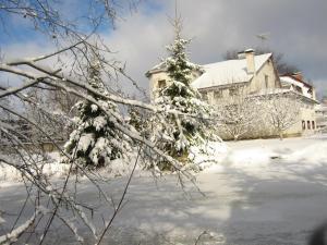 Гостевой дом Оазис - фото 8