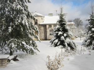 Гостевой дом Оазис - фото 5