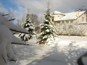 Гостевой дом Оазис - фото 4