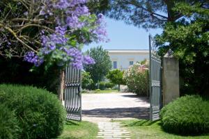 Masseria Li Foggi, Vidiecke domy  Gallipoli - big - 80