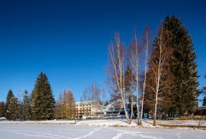 Orea Resort Devět Skal Vysočina, Hotely  Sněžné - big - 40