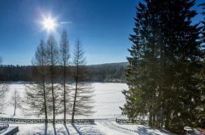 Orea Resort Devět Skal Vysočina, Hotely  Sněžné - big - 33