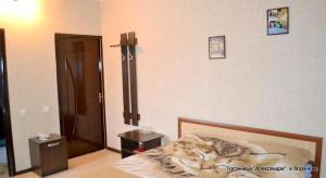 Отель Александра - фото 8