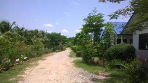 Kosum Resort
