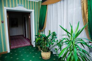 Отель Англитеръ - фото 24