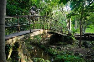 Aldea Ecoturismo, Hotels  Jalcomulco - big - 1