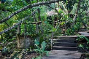 Aldea Ecoturismo, Hotels  Jalcomulco - big - 3