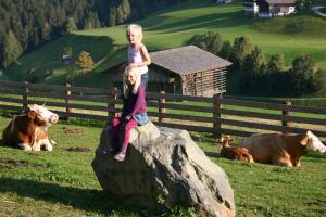 Bauernhof im Wiesengrund