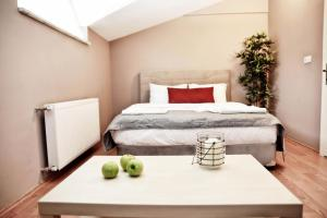 Akin Suites, Aparthotels  Istanbul - big - 22