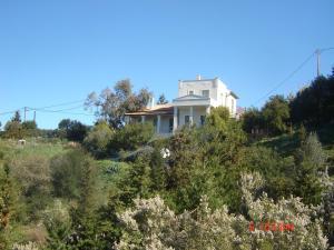 Villa Frederike, Dovolenkové domy  Alonnisos Old Town - big - 21