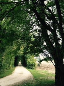 Domaine Le Rolant