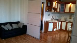 Apartment Engelsa 97