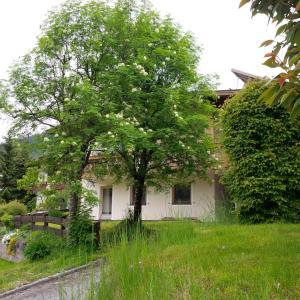 Sonnhangweg, Holiday homes  Niederau - big - 16