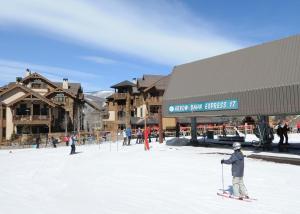 Pinecone Lodge by Exclusive Vail Rentals, Apartmány  Beaver Creek - big - 15