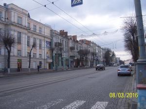Gostevoy Apartment, Penzióny  Vinnytsya - big - 101