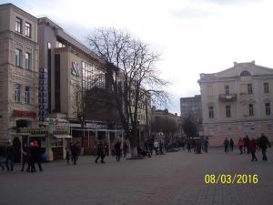 Gostevoy Apartment, Penzióny  Vinnytsya - big - 63
