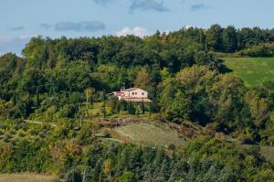Tenuta Sant'Apollinare, Дома для отпуска  Mondaino - big - 53