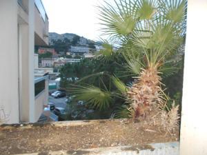 Appartement au jardin du cap martin, Apartmány  Roquebrune-Cap-Martin - big - 24