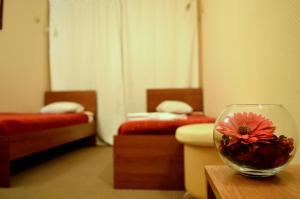 Отель Пушкин - фото 14