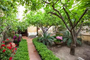 Villa Goethe, Bed and breakfasts  Agrigento - big - 18