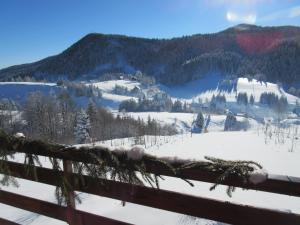 Chalet Vrh
