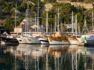 Apartment Dalmatia 365