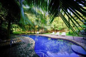 哥斯达黎加生态酒店